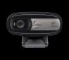 webová kamera Logitech HD Webcam C170