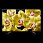 "Sony 65"" 4K HDR TV KD-65XG8096BAEP"
