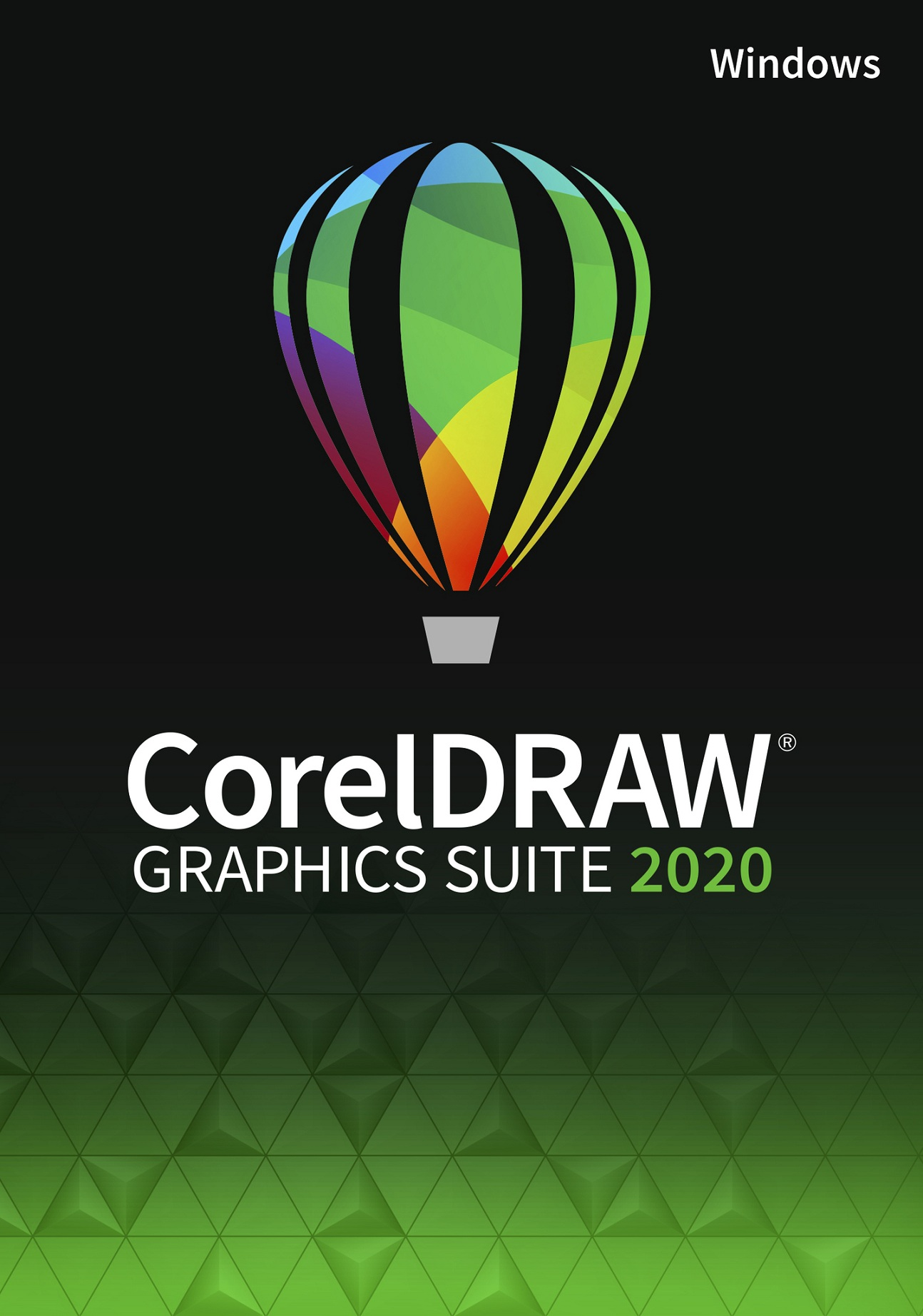CorelDRAW Graphics Suite 2020 Class Lic. Win 15+1