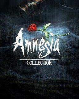 ESD Amnesia Collection